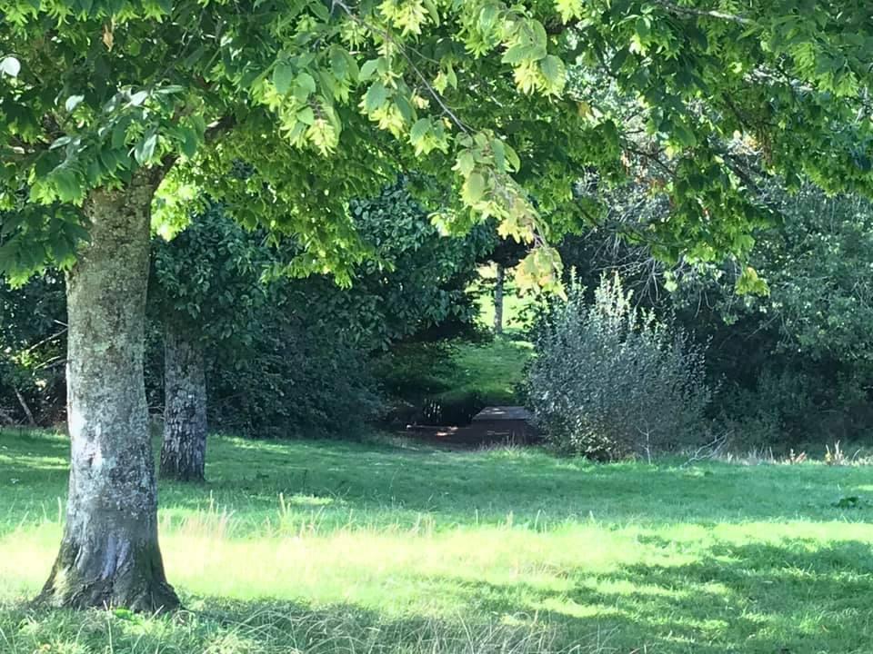 Tincombe Green